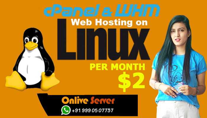 Get the Instant Cheapest Linux VPS for High Website Performance